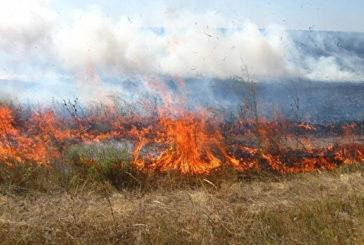 На Тернопільщині через спалювання стерні пошкоджено залізничну колію
