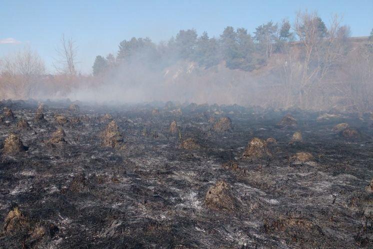 На Гусятинщині через спалювання сухої трави згоріла господарська будівля