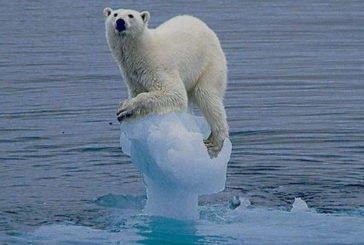 У Європі оголосили надзвичайний кліматичний стан
