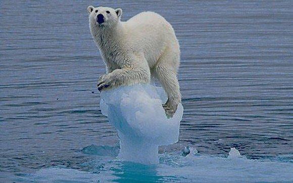 Глобальне потепління зміниться різким похолодання