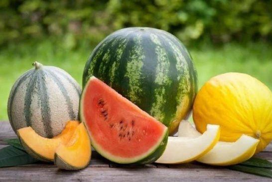 Головна ягода серпня: кому корисний кавун, а кому краще не ласувати?