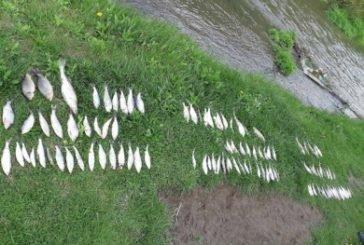 Троє жителів Борщівщини браконьєрили на річці Нічлавка (ФОТО)