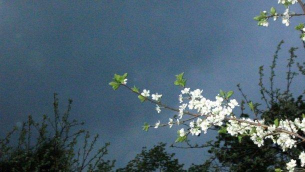 У давнину 14 травня проводжали весну і зустрічали проліття