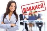 Вакансії та вільні робочі місця у Тернополі: скільки і на які посади