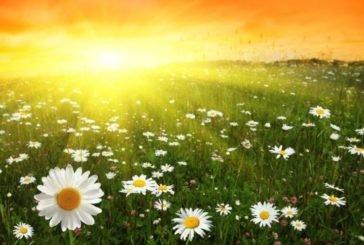 У середу - сонце, спека і жодних дощів