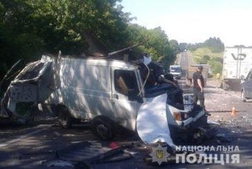 На Тернопільщині в аварії загинув водій буса(ФОТО)