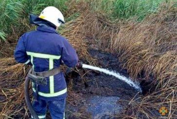 На Шумщині горить торф (ФОТО)