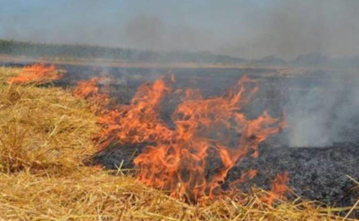 На Теребовлянщині згоріла стерня і скутер, що був на полі