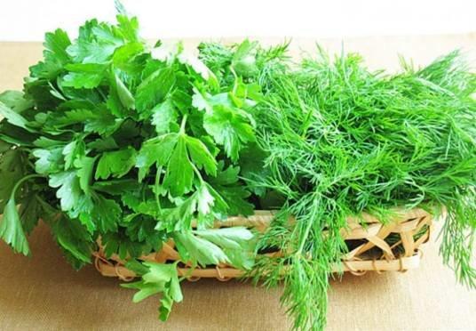 Зелень незамінна і на кухні, і в народній медицині