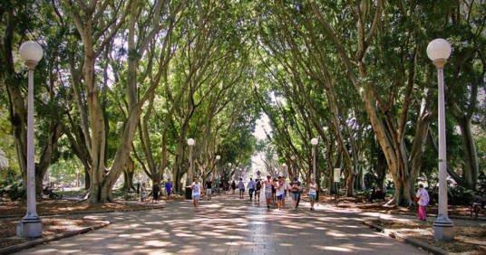 У світі з'явилося перше офіційне місто-парк