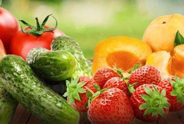 Що готувати в серпні: рецепти страв із сезонних продуктів