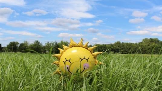 Сьогодні – багато сонця, чистого неба, сухого повітря і слабкого вітру