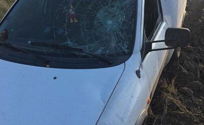 Кинув авто в полі та втік: встановили особу водія, який збив маму з маленькими дітьми (ФОТО)