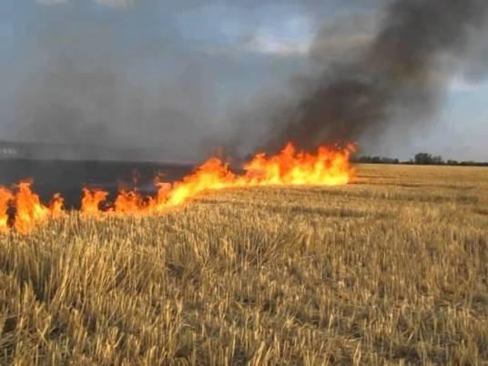 Тернопільські «господарі» не зважають на заборону: спалюють стерню та суху траву