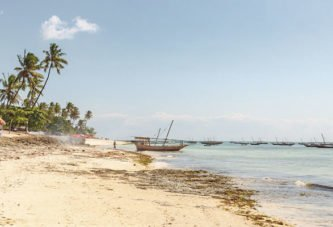 Тернопільська журналістка вивчала принади африканського острова: Занзібар: як можна бути бідним і щасливим?