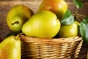 Що приготувати з грушею - найкращі рецепти страв