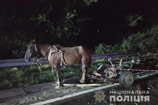Смертельна аварія на Тернопільщині: вантажівка наїхала на підводу
