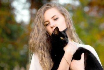 «Запитай у чорної кішки…»