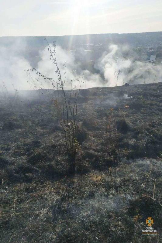 У Бережанах і Теребовлі через спалювання сухої трави могли згоріти ліси (ФОТО)