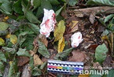 На Бережанщині дерево важко травмувало 38-річного чоловіка