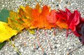 12 листопада буде вітряно, але без дощу