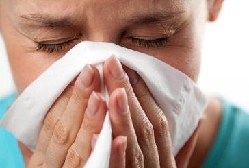Алергія на домашній пил – хто винен?
