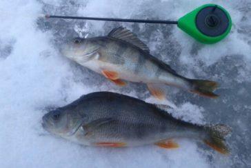 Тернопільський рибоохоронний патруль - про зимову рибалку