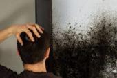Профілактика грибка: як уникнути появи на стінах і стелі