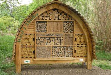 В Іспанії відкриють міні-готель для бджіл