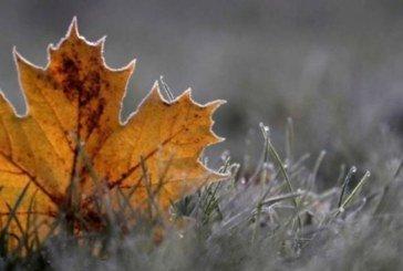 21 січня – останній теплий день перед снігопадом