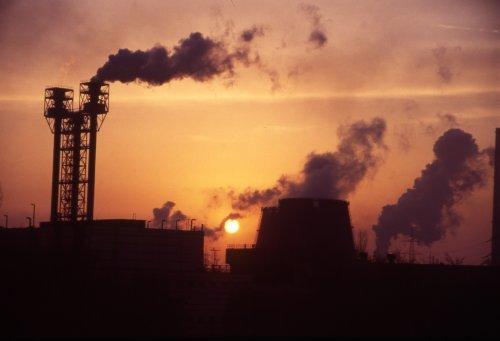 Залишилося 10 років: ООН зробила різку заяву про життя на планеті
