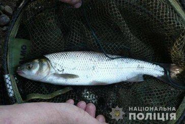 За вилов червонокнижної риби житель Тернопільщини відповідатиме перед законом