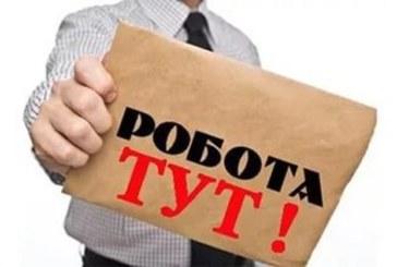 На Тернопільщині є понад тисячу вакансій: кого найбільше шукають роботодавці