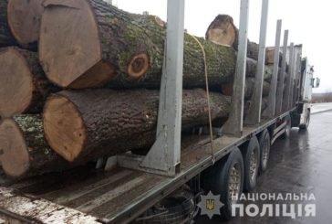 На Тернопільщині правоохоронці задокументували два факти незаконного перевезення деревини (ФОТО)