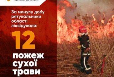Підпалам карантин не завада: на Тернопільщині продовжує горіти суха трава