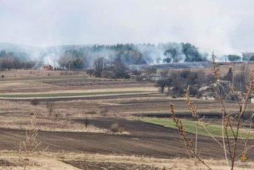 На Тернопільщині через масштабну пожежу сухої трави могли зайнятися лісопосадка та село (ФОТО)