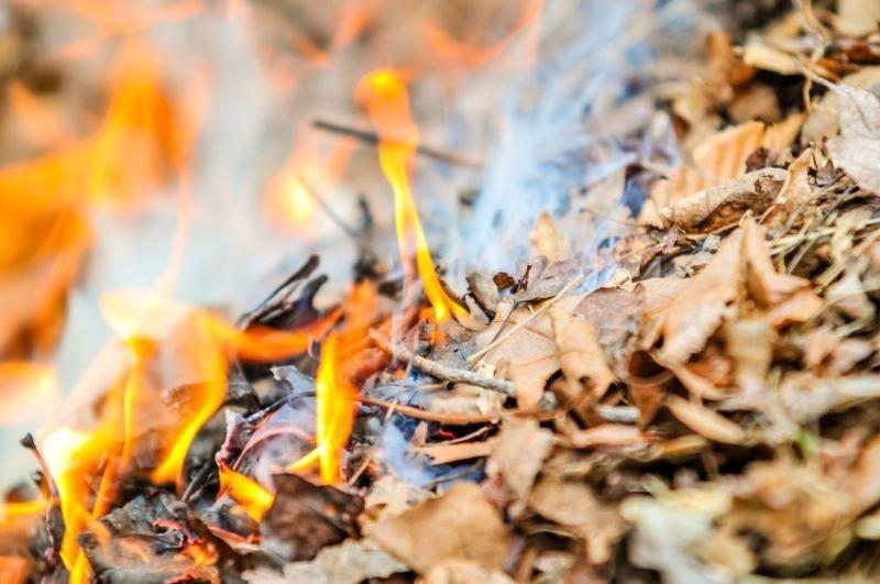 На Тернопільщині пенсіонерка згоріла разом із сухим листям