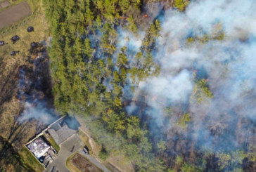 Палаюча недбалість: у пожежі - Чорнобиль, вигорають тернопільські ліси