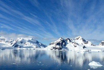 В Антарктиді раніше ріс тропічний ліс