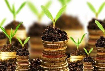 Землекористувачі Тернопільщини сплатили до місцевих бюджетів 82,6 млн грн