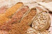 В Україні дозволили торгівлю пестицидами та насінням в умовах карантину