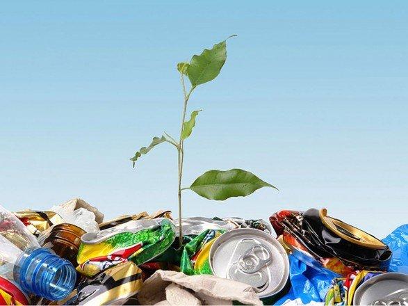 На одного жителя Тернопільщини торік припало 1019 кг відходів