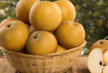 Україна залишиться без абрикос, персиків і слив