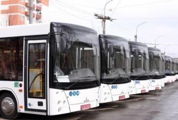 Послаблення карантину: як працює громадський транспорт у Тернополі та приміських селах
