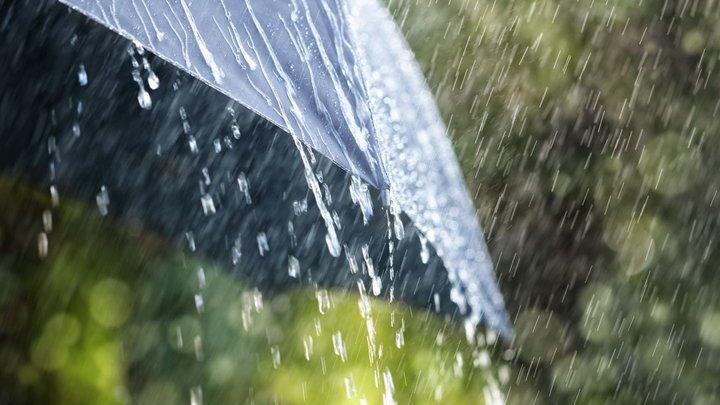 Перший день літа буде дощовим та прохолодним