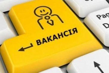 У Тернополі є 594 вільних робочих місць та вакансій