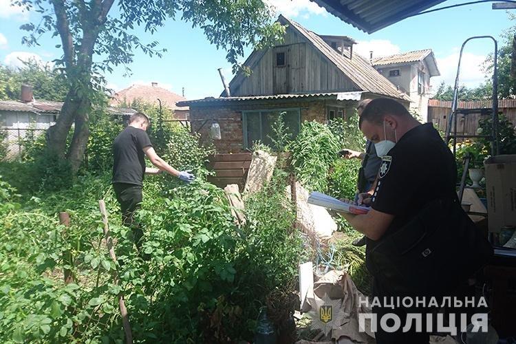 Правоохоронці Тернопільщини виявили десятки фактів незаконного вирощування коноплі та маку