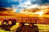 На Тернопільщині є вакансії у сільськогосподарській сфері: пропонують гарні зарплати