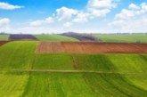 У тіньовому обробітку в Україні – 8 мільйонів гектарів землі