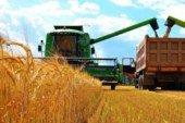 «Урожай-2020»: сільгоспвиробники Тернопільщини підвищили зарплату працівникам